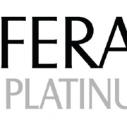Liferay Platinum Partner